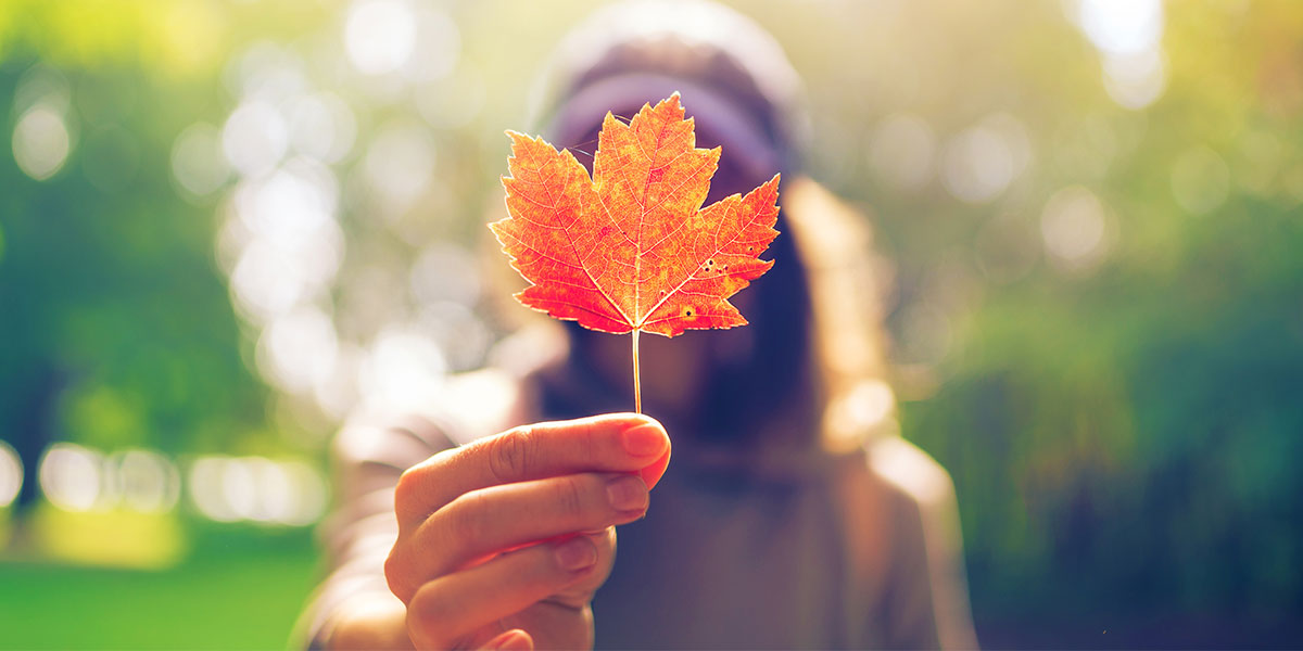 7 reasons to love living in Canada
